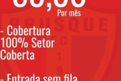 Adesão de novos sócios é a meta do marketing do Brusque FC; saiba como aderir