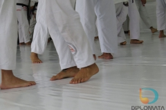 Seminario de Jiu Jitsu com mestre Rilion Gracie (12)