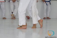Seminario de Jiu Jitsu com mestre Rilion Gracie (17)