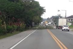 Ventos provocam danos em Brusque e Guabiruba  (Fotos/Divulgação)