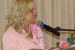 Rede Feminina de Combate ao Cancer (27)
