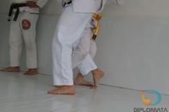 Seminario de Jiu Jitsu com mestre Rilion Gracie (13)