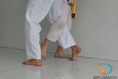 Seminario de Jiu Jitsu com mestre Rilion Gracie (14)