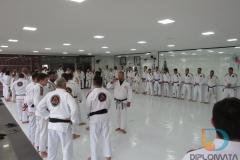 Seminario de Jiu Jitsu com mestre Rilion Gracie (2)