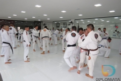 Seminario de Jiu Jitsu com mestre Rilion Gracie (21)