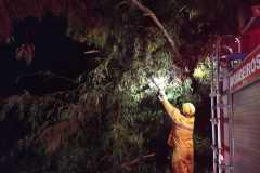 O temporal do final da noite de domingo, 14, provocou queda de árvore e problemas no fornecimento de energia elétrica em alguns bairros de Brusque (Foto: Corpo de Bombeiros)