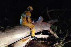 O temporal do final da noite de domingo, 14, provocou queda de árvore e problemas no fornecimento de energia elétrica em alguns bairros de Brusque