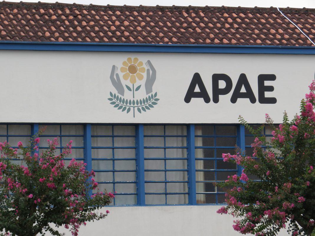 ApaeBrusqueDiplomataFM