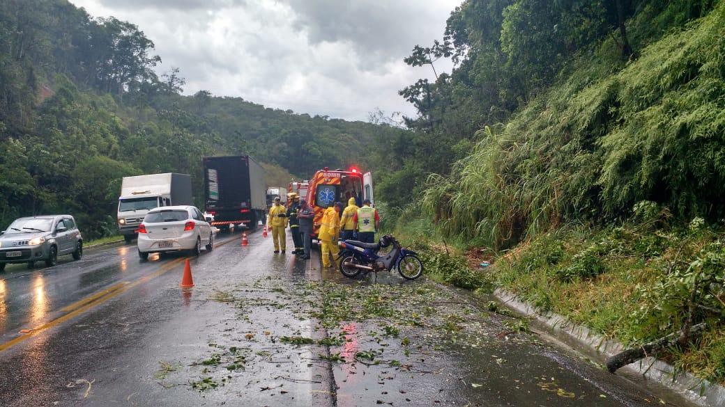Motociclista de Brusque é atingido por árvore durante tempestade na BR-470