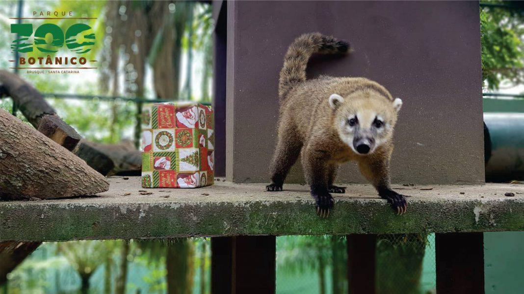 Parque Zoobotânico de Brusque já recebeu 3500 visitantes nas férias