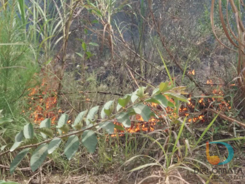 Incêndio em vegetação