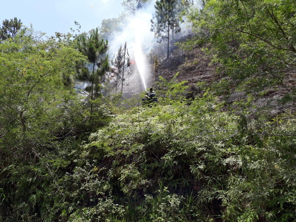 Corpo de Bombeiros combate incêndio na Rod. Antônio Heil