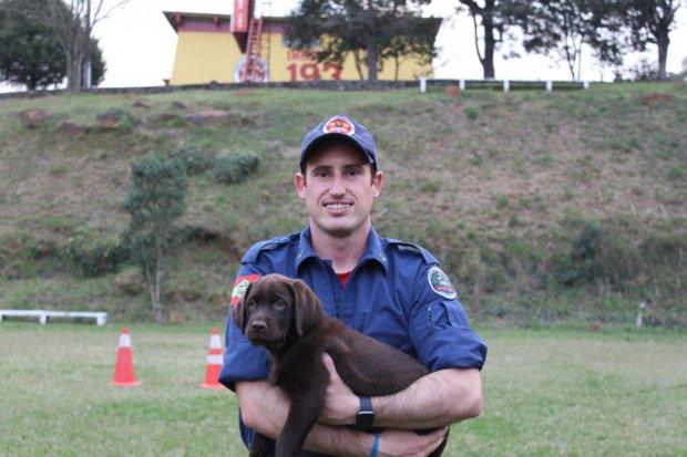 Corpo de Bombeiros SC efetiva Bono como novo cão de busca e resgate