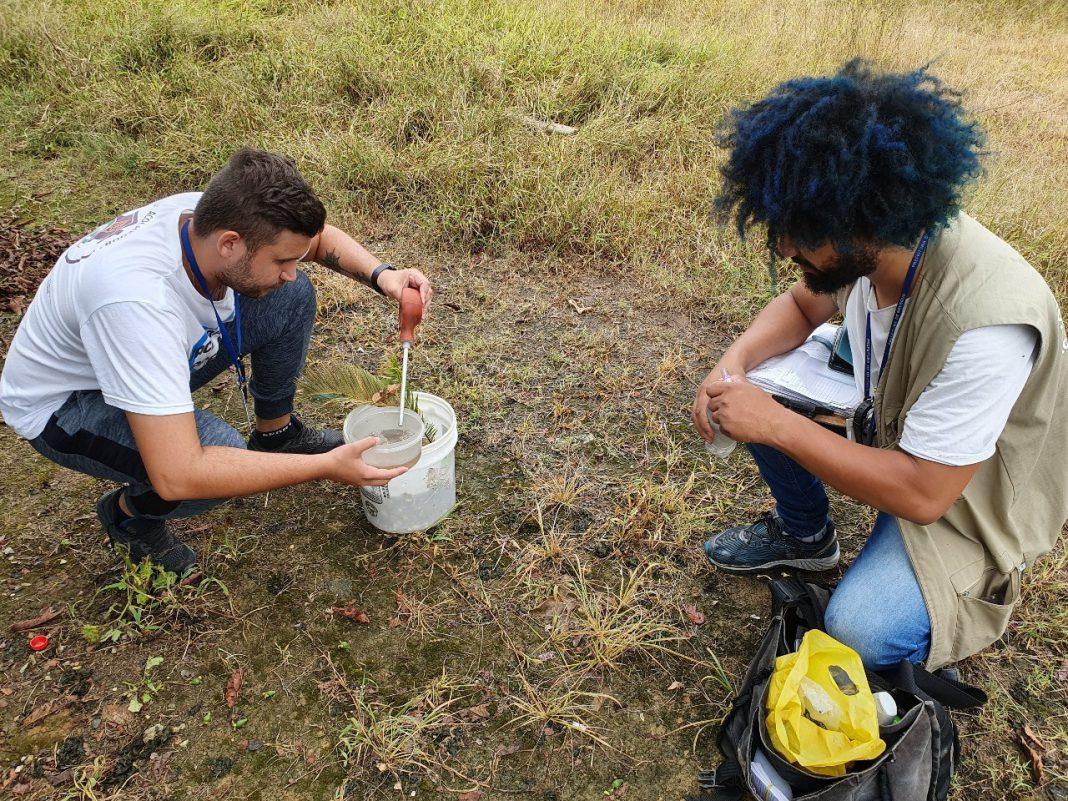 Combate à dengue: Agentes de endemias voltam a visitar residências