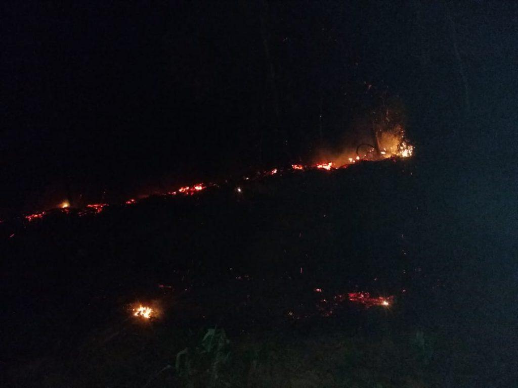 Corpo de Bombeiros combate incêndio em vegetação na rua Ponta Russa
