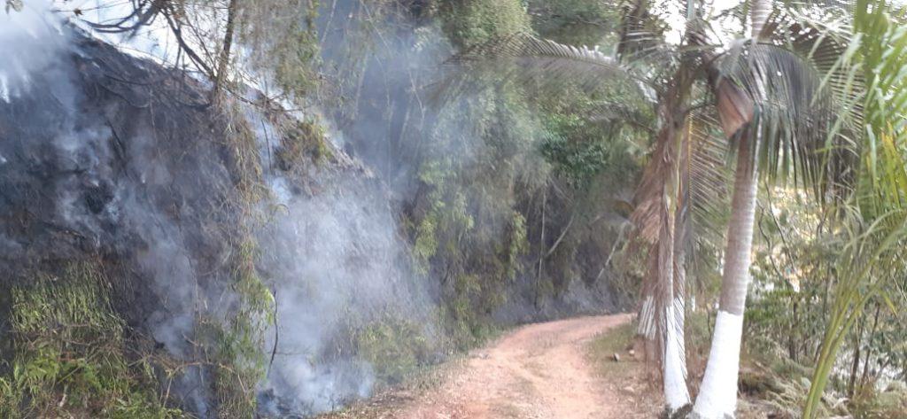 Incêndio destrói 5m² de vegetação no Guarani