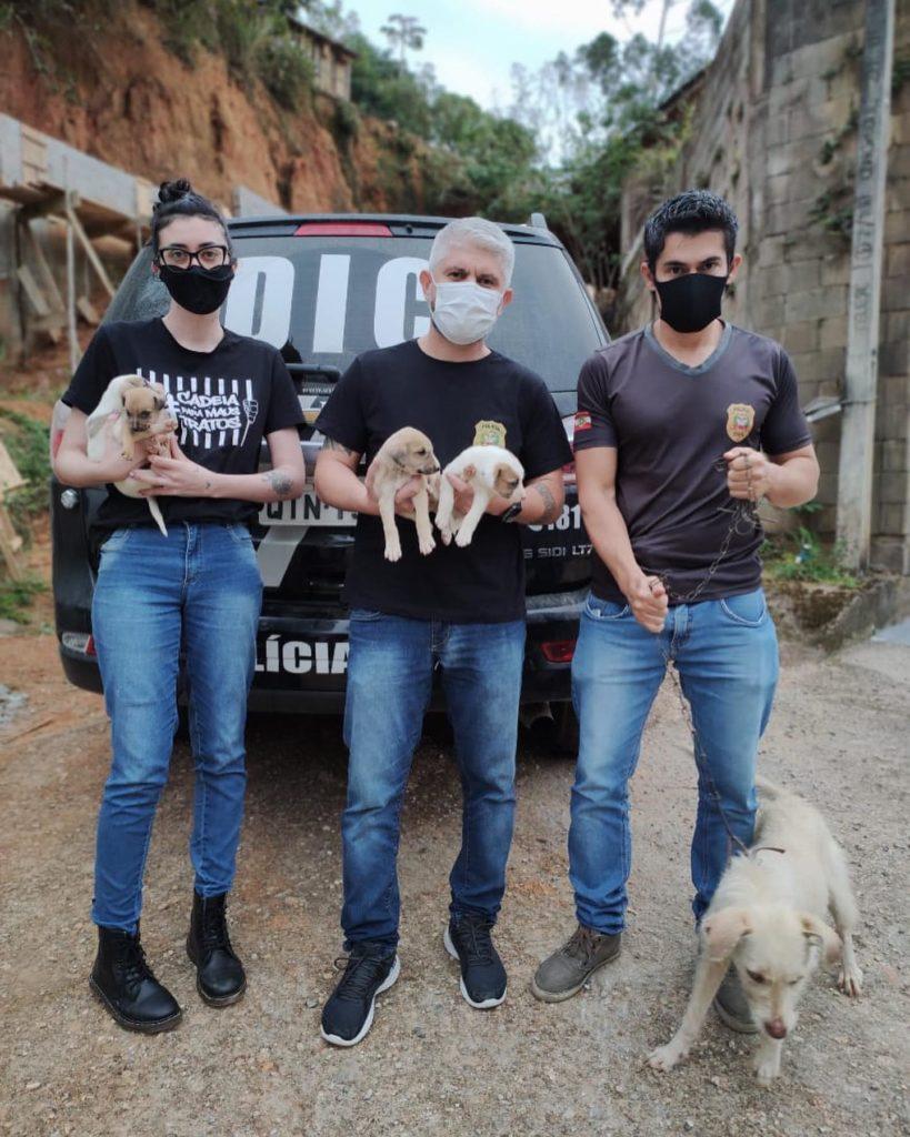 Equipe da Polícia Civil com apoio da Acapra durante resgate de cães em situação de maus tratos